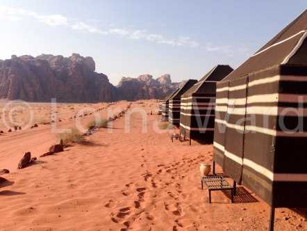 The Milky Way camp, Wadi Rum