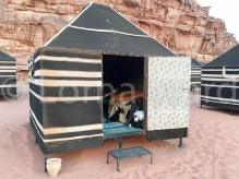 Milky Way camp, Wadi Rum
